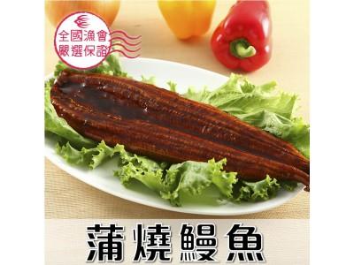 蒲燒鰻魚1尾